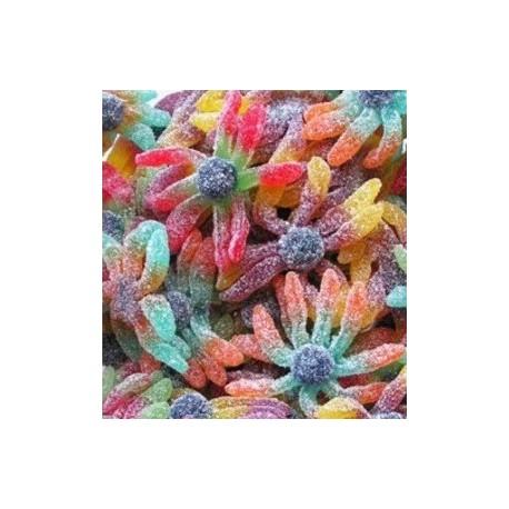 Joubini Acidulé Trolli sac de 1 kg