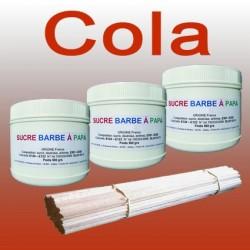 Lot de 3 pots de Sucre barbe à papa Cola 500g + 100 Bâtons