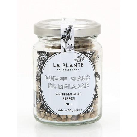Poivre Blanc de Malabar Bio pot de 50 Grs
