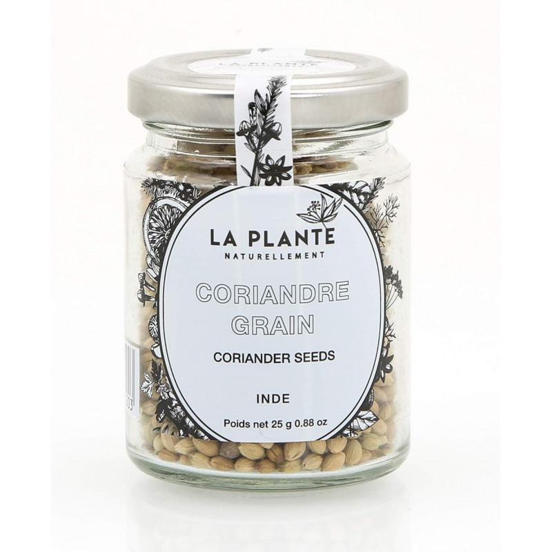 coriandre grain bio pot de 25 grs azur confiserie. Black Bedroom Furniture Sets. Home Design Ideas